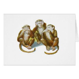 Comic Monkeys Hear See Do No Evil Cards
