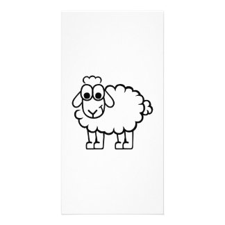 Comic sheep photo card