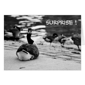 Comical Goose Card