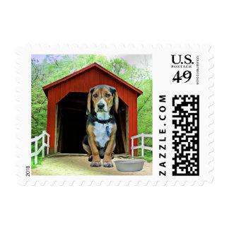 Comical Sandy Creek Covered Bridge Dog House Postage