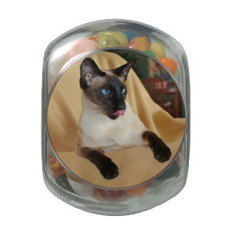 Comical Seal Point Siamese Cat Licking It's Nose Glass Candy Jars