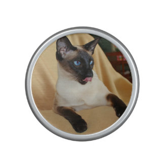 Comical Seal Point Siamese Cat Licking It's Nose Speaker