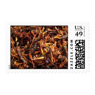 Comida asiática frita del saltamontes (Takkataen Sellos Postales