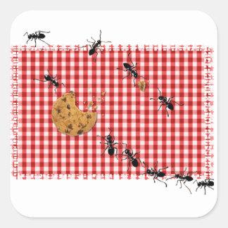 Comida campestre de la hormiga pegatina cuadradas personalizada