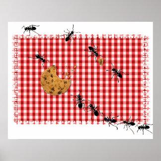 Comida campestre de la hormiga póster