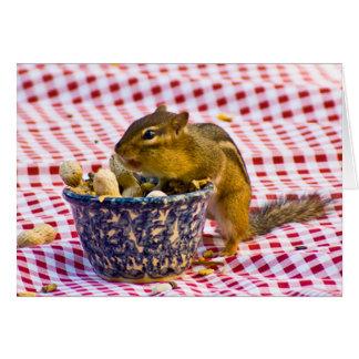 Comida campestre del Chipmunk Tarjeta De Felicitación