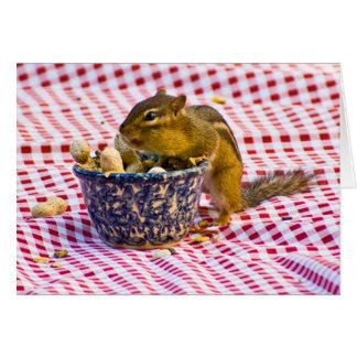 Comida campestre del Chipmunk Tarjeta Pequeña