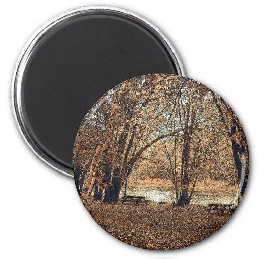 Comida campestre del otoño imán redondo 5 cm