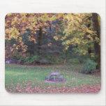 Comida campestre del otoño tapetes de ratón