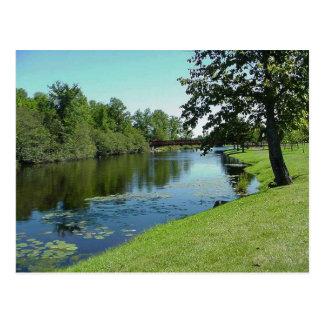 Comida campestre del parque del agua de río de la  postales