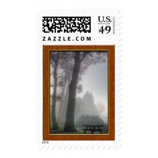 Comida campestre en la niebla en el parque sellos
