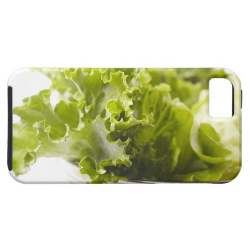 Comida, comida y bebida, verdura, lechuga, iPhone 5 funda