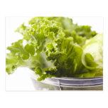 Comida, comida y bebida, verdura, lechuga, postal