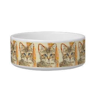 Comida del gatito o cuenco observada azul del agua tazón para agua para gatos