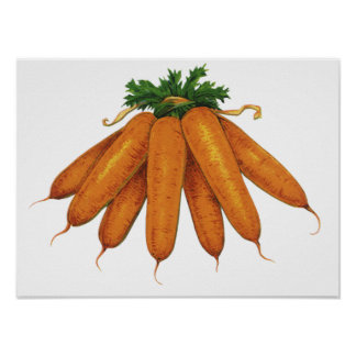 Comida del vintage, manojo de verduras orgánicas póster