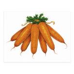 Comida del vintage, verduras; Manojo de zanahorias