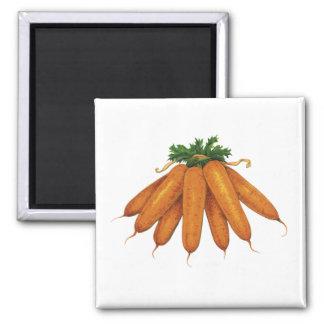 Comida del vintage, verduras; Manojo de zanahorias Iman