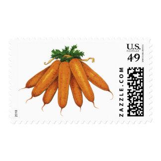Comida del vintage, verduras; Manojo de zanahorias Franqueo