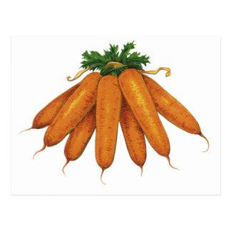 Comida del vintage, verduras; Manojo de zanahorias Postal