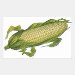 Comida del vintage, verduras sanas, maíz en la pegatina rectangular