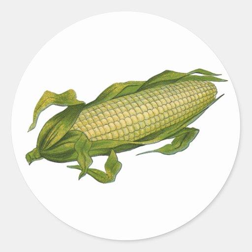 Comida del vintage, verduras sanas, maíz en la pegatina redonda