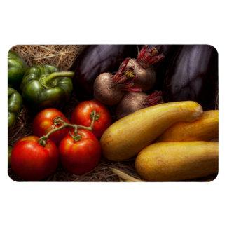 Comida - pimientas, tomates, calabaza y nabos iman rectangular
