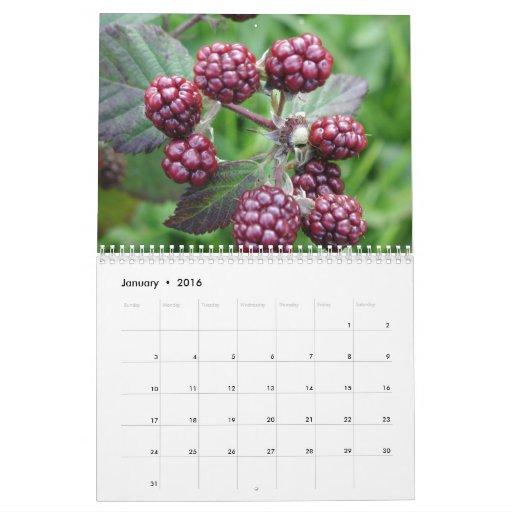 Comida y bebida calendarios de pared