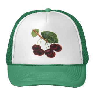 Comidas de la fruta del vintage, cerezas maduras gorro