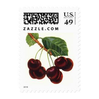 Comidas de la fruta del vintage, cerezas maduras sello postal