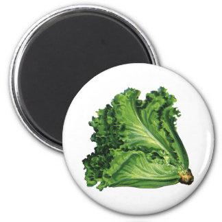 Comidas del vintage, verduras, lechuga de hoja imán redondo 5 cm