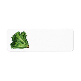 Comidas del vintage, verduras verdes de la lechuga etiqueta de remitente