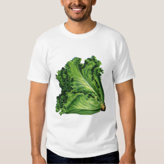 Comidas del vintage, verduras verdes de la lechuga playera