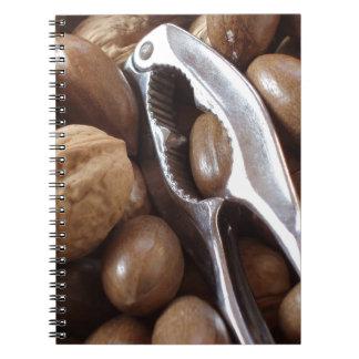 COMIDAS NUTS PHOTOGRAP DEL METAL PLATEADO DEL CASC LIBRETA
