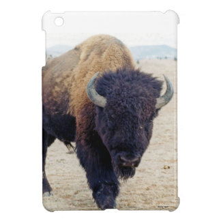 Comin en el búfalo de Ya iPad Mini Cárcasas