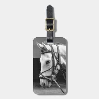 Coming Attraction Bag Tag