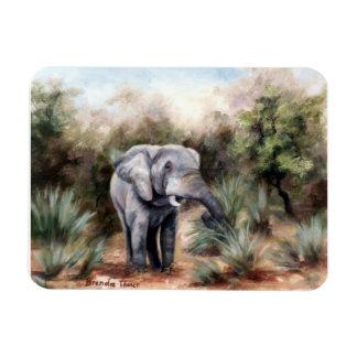 Coming Through Elephant Magnet