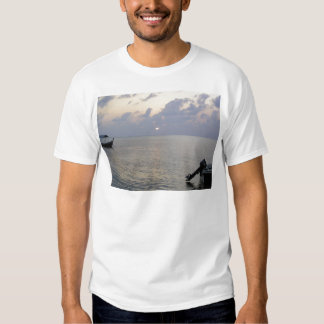 Coming to a rest shirt