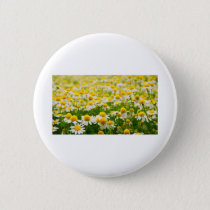Coming Up Daisies Button