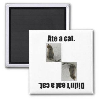 Comió un gato imán cuadrado
