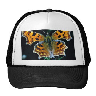 Comma butterfly trucker hat