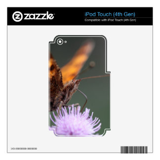 Comma Butterfly, Polygonia c-album Decal For iPod Touch 4G
