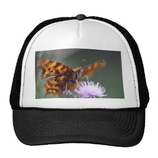 Comma Butterfly, Polygonia c-album Trucker Hat