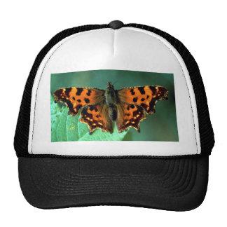 Comma, Polygonia c-album Trucker Hat