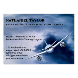 Commercial Jet Plane in the Sky Aviation Large Large Business Card
