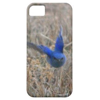 Commin' at Ya iPhone SE/5/5s Case