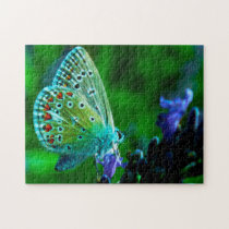 Common Blue Butterfly . Jigsaw Puzzle