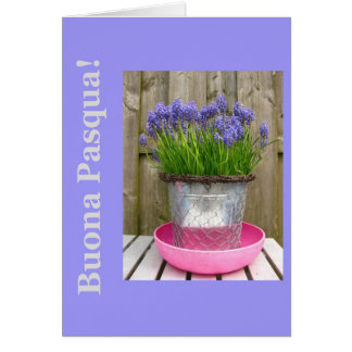Common blue hyacints easter greeting - italian greeting card