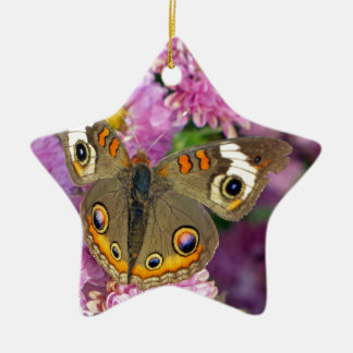 Common Buckeye Butterfly Ceramic Ornament