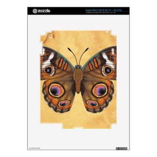 Common Buckeye Butterfly iPad 3 Skin