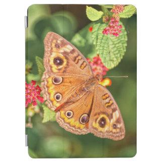 Common Buckeye Butterfly iPad Air Cover